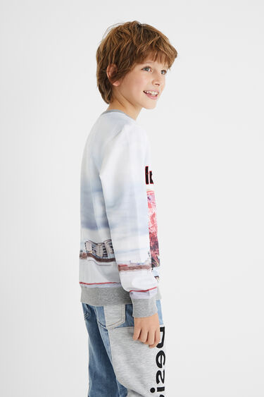 Plush sweatshirt skate | Desigual